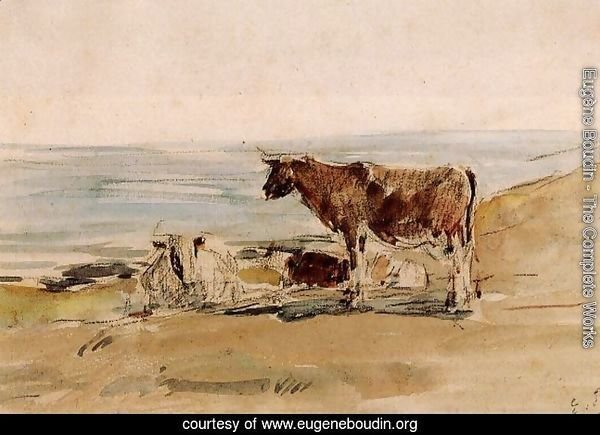 Cows near the Shore
