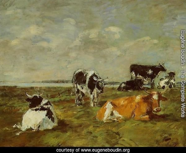 Cows near the Sea