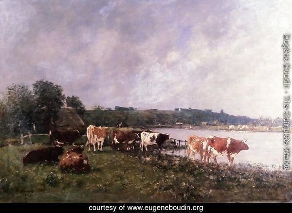 Cows on the Riverbanks of the Touques